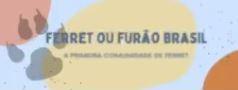 Grupo Ferret ou Furão Brasil (Facebook)